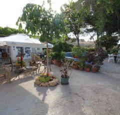 Ref. 20 Chalet de 100 m2 en parcela rústica de 5.000 m2 - Campello